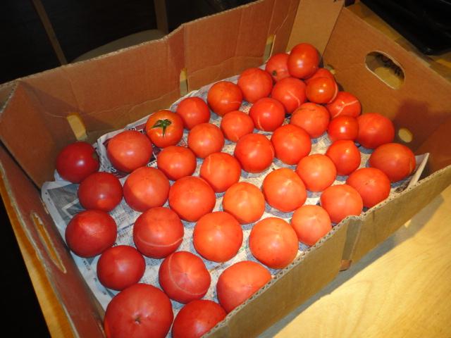 トマトドレッシング